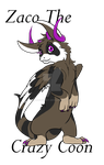 Zaco The Crazy Coon my new DAD by Darumemay