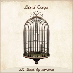 3D Bird Cage by zememz
