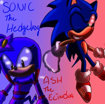 RQ: ASH AND SONIC ! by SonicForTheWin1