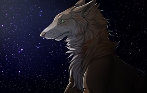 Look at the stars (YCH Finish) by FuriDeamon