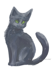 kitty cat by ScarisWolf