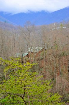 Smoky Mountains (102) by Kicks02