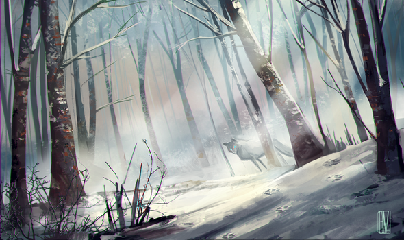 Winter Forest by KuroCyou