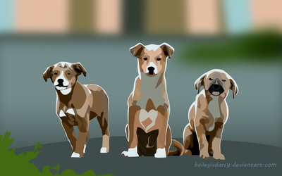 3 Pups by BaileyisDarcy