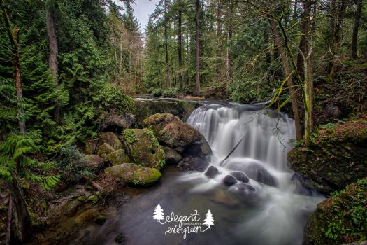 Whatcom Falls by Reyna-Love