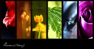 Rainbow of Nature by Hussain-Studio