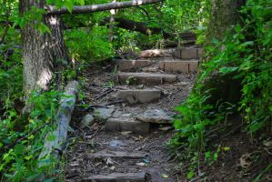Stairs in the Woods by KEArnold