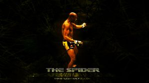 Anderson Silva Wallpaper by maculous