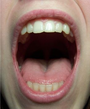 Mouth Detail Front by Della-Stock