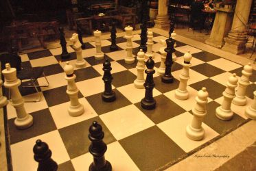 Chess Pieces by ryanevale