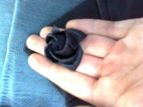 Black rose by isaacngym