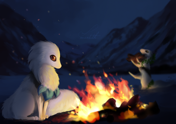 Campfire night by Martith