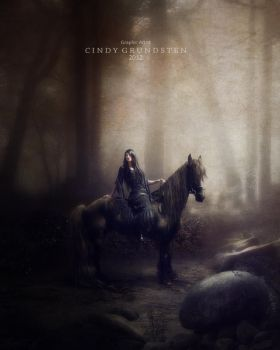 The night rider by CindysArt