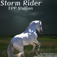 Storm Rider by Carillie