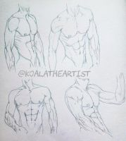Male Anatomy 2 (Chest / Abs) by KoalaTheArtist