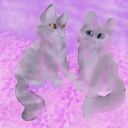 Stonepaw and Mistypaw by Liljatupsu