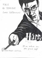 Harry potter by LOrdalie