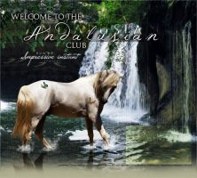 Andalusian club by Impressive-Instant