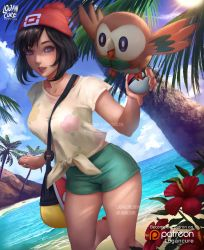 Moon and rowlet by logancure