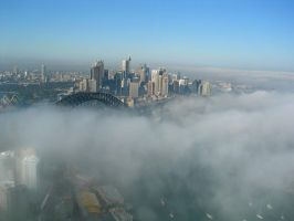 Sydney above the fog by AngryKoalaDownUnder