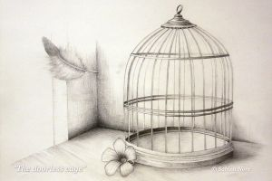 The Doorless Cage by SabinaNore