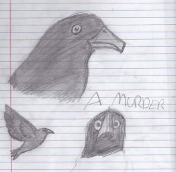 A murder of sketches, or a crow-dump. by Pop-Tart-Zombie