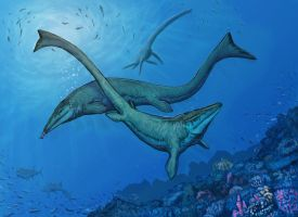 Tylosaurus Dance by Ashere