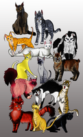 Cool Cats of Organization 13 by KT-245
