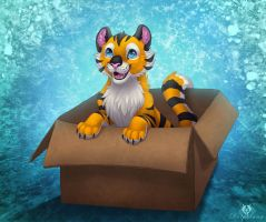 'I like my box!' :3 by DolphyDolphiana
