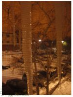2010 10 02 Snow Pictures 03 by lilly-peacecraft