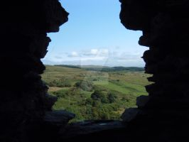View towards Dolwyddelan from the Castle by buttercupminiatures