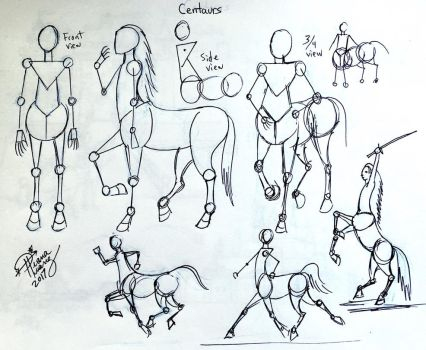 Draw Centaurs by Diana-Huang