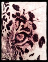 Leopard by totalserenity1