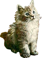 Cute Kitty (stock) by linux-rules