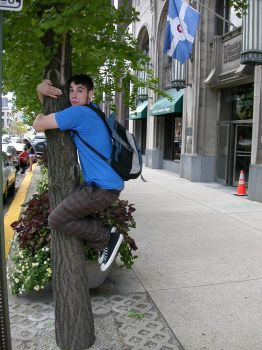 climbing a tree...in the city by nearertonever