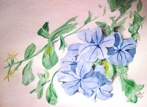 summer flowers blue by scooterb63