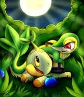 Snivy And Turtwig