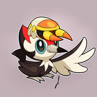 Pikipek and Grubbin!