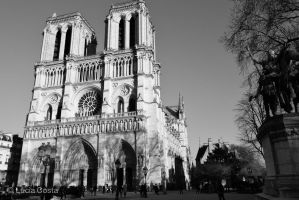 Notre Dame by beatrice
