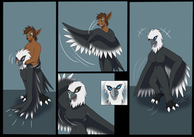 Ych #5 Eagle Suit by Avianine