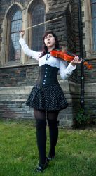 Violin 6 by Noree-stock
