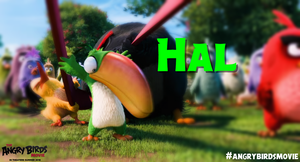 The Angry Birds Movie Hal Wallpaper by Jeremiekent13