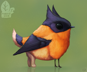 Auction: Rufousling by nybird