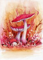 Autumn mushrooms by MaryIL