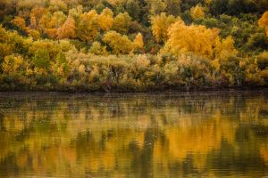 autumn along the river by torobala