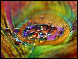 Magic Rainbow by Lilyas
