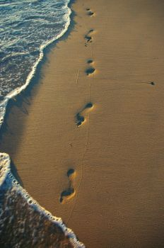 Footprints In The Sand by euzhaphotography