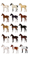 Foal Adopts - CLOSED by shot-fired