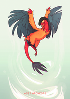 #567 Archeops