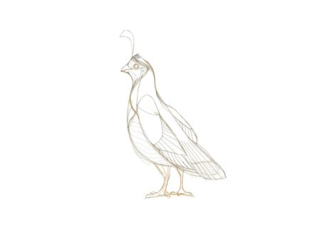First draw of a partridge by gusvader